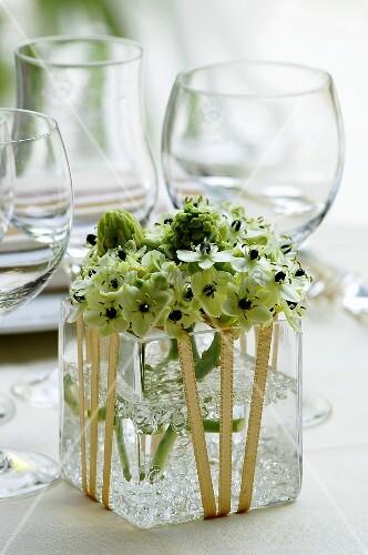 Blumen im viereckigen Glasgefss  Bild kaufen  00366382