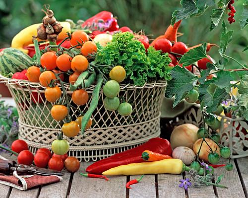 Metal basket with lycopersicon (tomato)