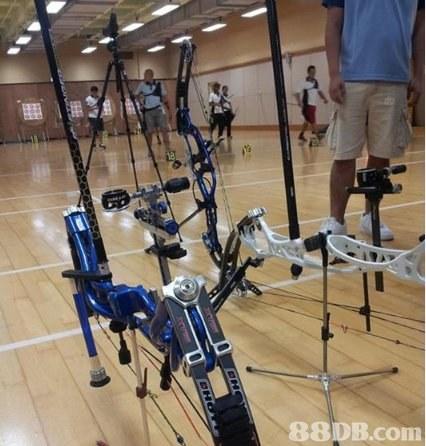 港島射箭會提供兒童射箭興趣班,射箭課程,射箭技巧等服務 - HK 88DB.com