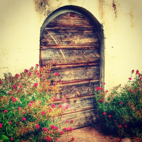 """""""Secret door"""" #door #garden #lackoslott"""