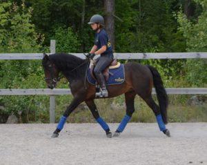 Pernilla och Monarch 2013 inför kvalitén.