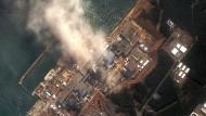Zehn Jahre nach Fukushima: So veränderte das Unglück Deutschland