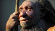 Pferde und Rentiere: Große, pflanzenfressende Säugetiere waren offenbar die Leibspeise von Neandertalern (Symbolbild).