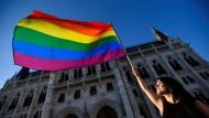 Auch in Ungarn gab es Proteste gegen das umstrittene Gesetz gegen Homo- und Transsexuelle (hier vor dem ungarischen Parlament am 14. Juni).