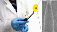 Zielscheibe: In einer dünnen Folie werden durch Beschuss mit einzelnen Ionen und anschließendes Ätzen Nanoporen (rechts) erzeugt