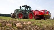 Beinahe 60 Prozent der Agrarflächen gehören inzwischen Nichtlandwirten und Investoren.