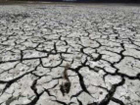 Klimawandel: Weltklimarat warnt vor existenziellen Bedrohungen für die Menschheit