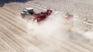 Ein Traktor fährt in Niedersachsen während der Kartoffelernte über ein trockenes Feld. (Archivfoto)