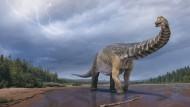 Eine künstlerische Darstellung zeigt den Dinosaurier Australotitan cooperensis, oder den Südtitan.