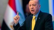 Erdogan während einer Rede in Istanbul am 22. März