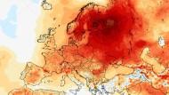 Von wegen sibirische Kälte: So weichen die mittleren Temperaturen im bisherigen Januar 2020 vom Mittelwert 1981 bis 2010 ab.
