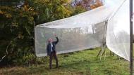 Ins Netz gegangen: Vogelkundler wie Wulf Gatter fangen seit Jahrzehnten auf der Schwäbischen Alb auch Insekten, um die Bestände auszuwerten.