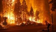 Ein Feuerwehrmann im September bei der Bekämpfung eines Waldbrands in Kalifornien.