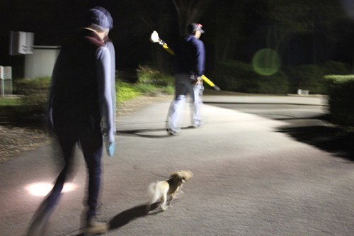 Frog-gigging with Iliana Regan and her dog Grizzly