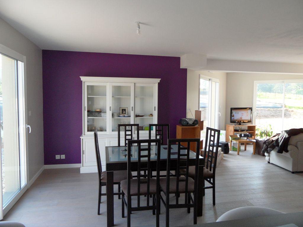 Peinture grise et violet pour salonsjour  cuisisne