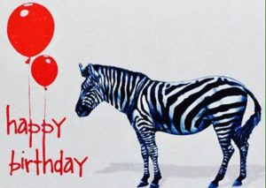 Zebra happy birthday