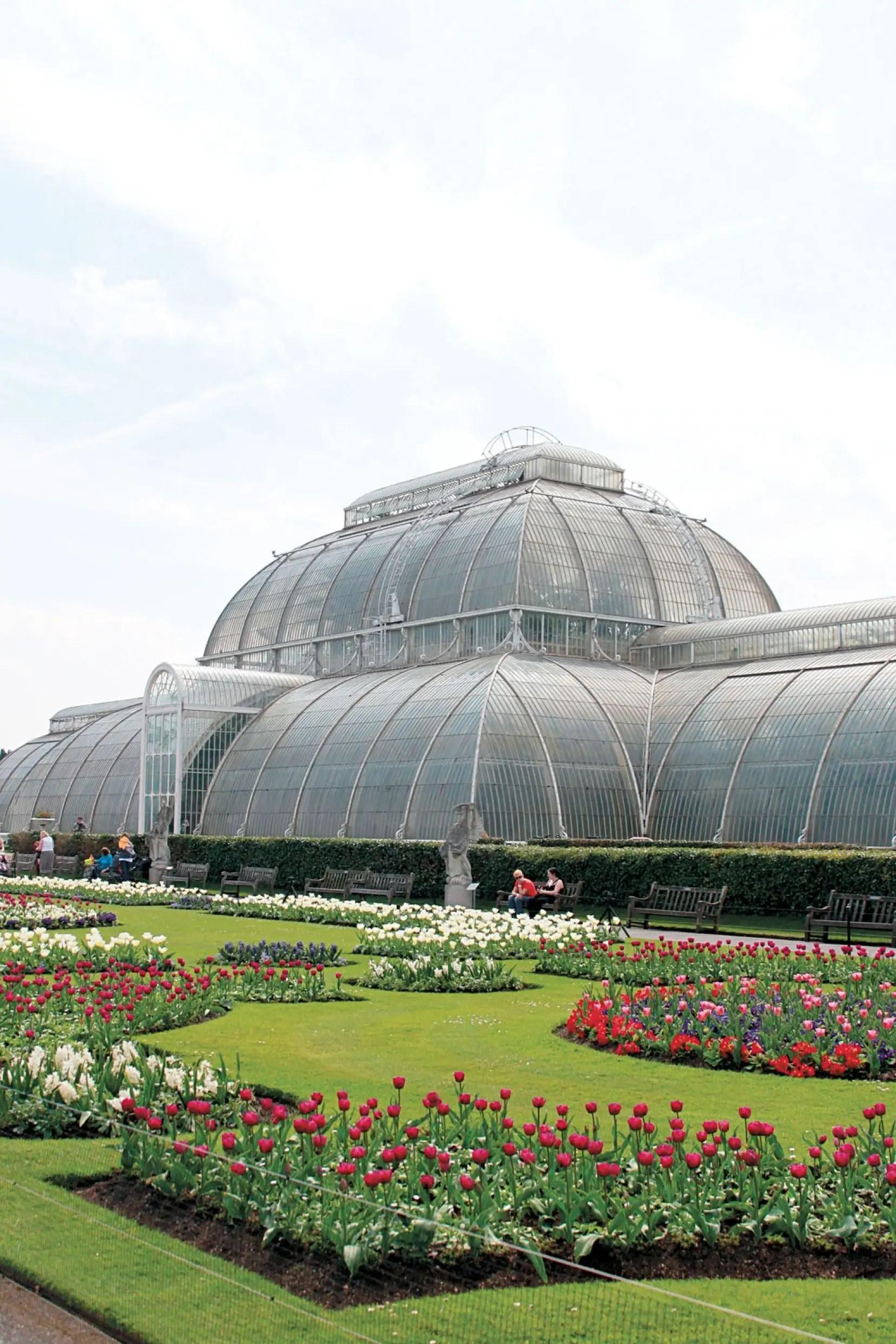 une fleur pour les pavillons de verre