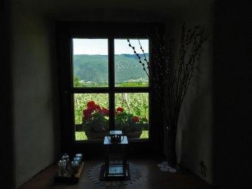 pogled iz kuće