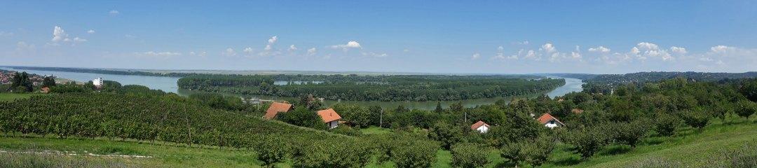 restoran vinogradi pogled