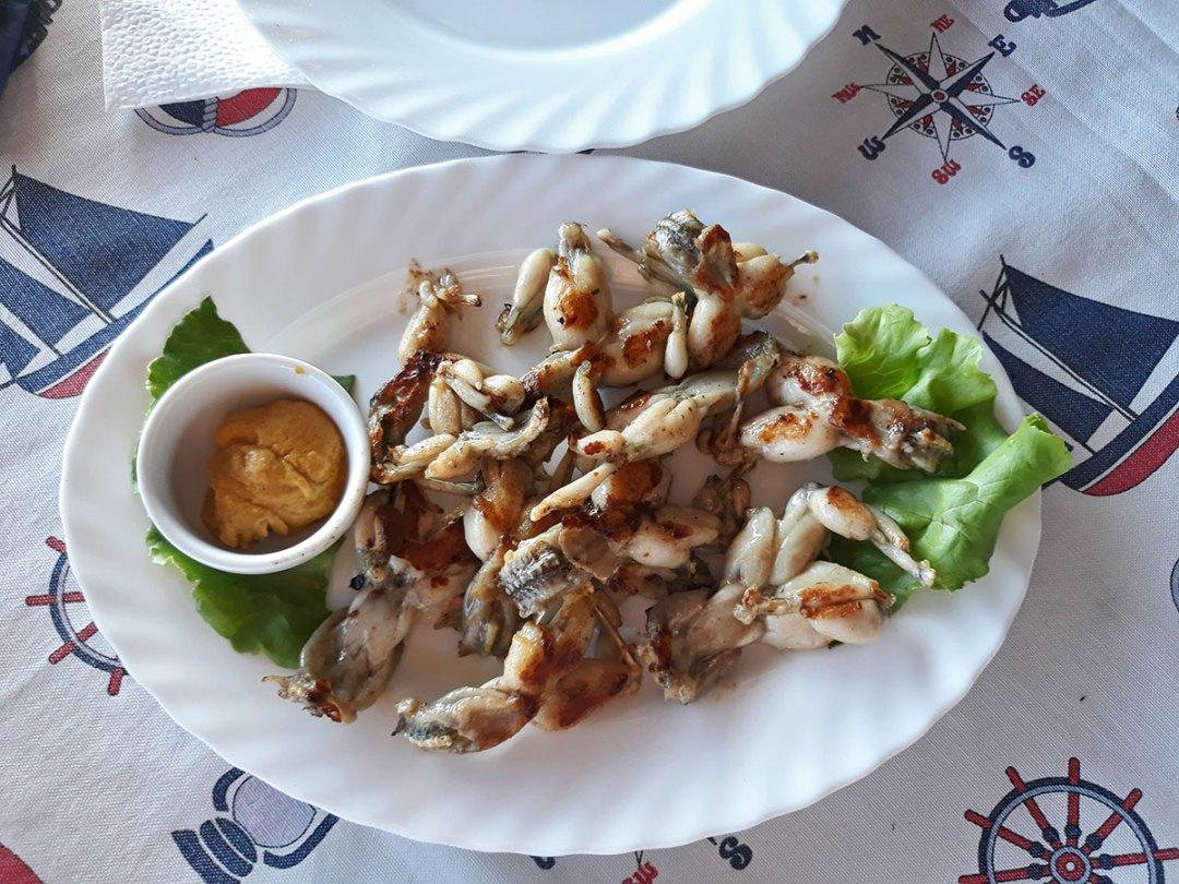 restoran Ribnjak žablji bataci