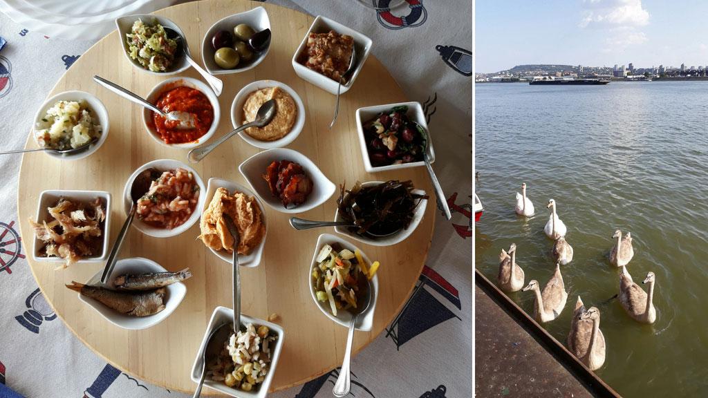 Restoran Ribnjak – na levoj obali Dunava sa simpatičnim ribljim predjelima