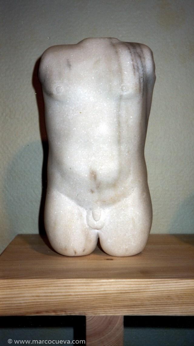 Torso 1998