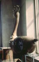 Tupp 1994