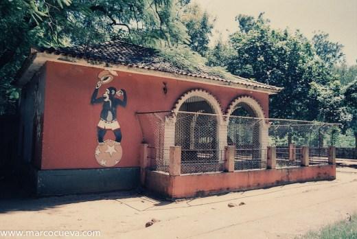 Maputo Zoo, 2007