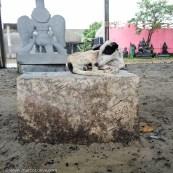 mamallapuram-151202-1