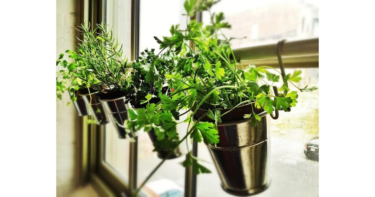 Hanging Herb Planters  Ikea Kitchen Hacks  POPSUGAR Home