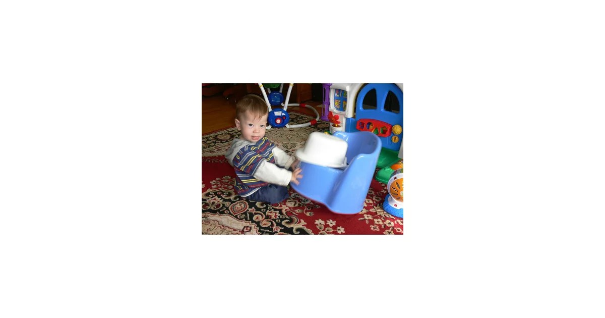 potty chair large child covers bulk sale should you train with a toilet insert or popsugar family