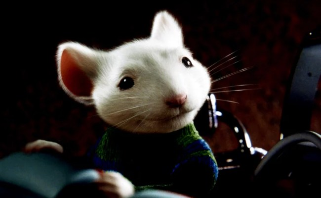 Stuart Little New Movies And Tv Shows On Netflix March
