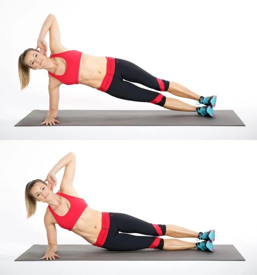 Image result for Side Planks.