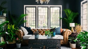 backgrounds living plant virtual lover meeting realistic bloomscape office meetings interior popsugar give rooms space dark plants filled ini cozy