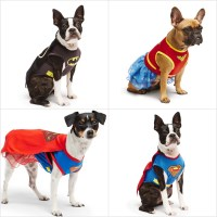Superhero Costumes For Dogs | POPSUGAR Pets