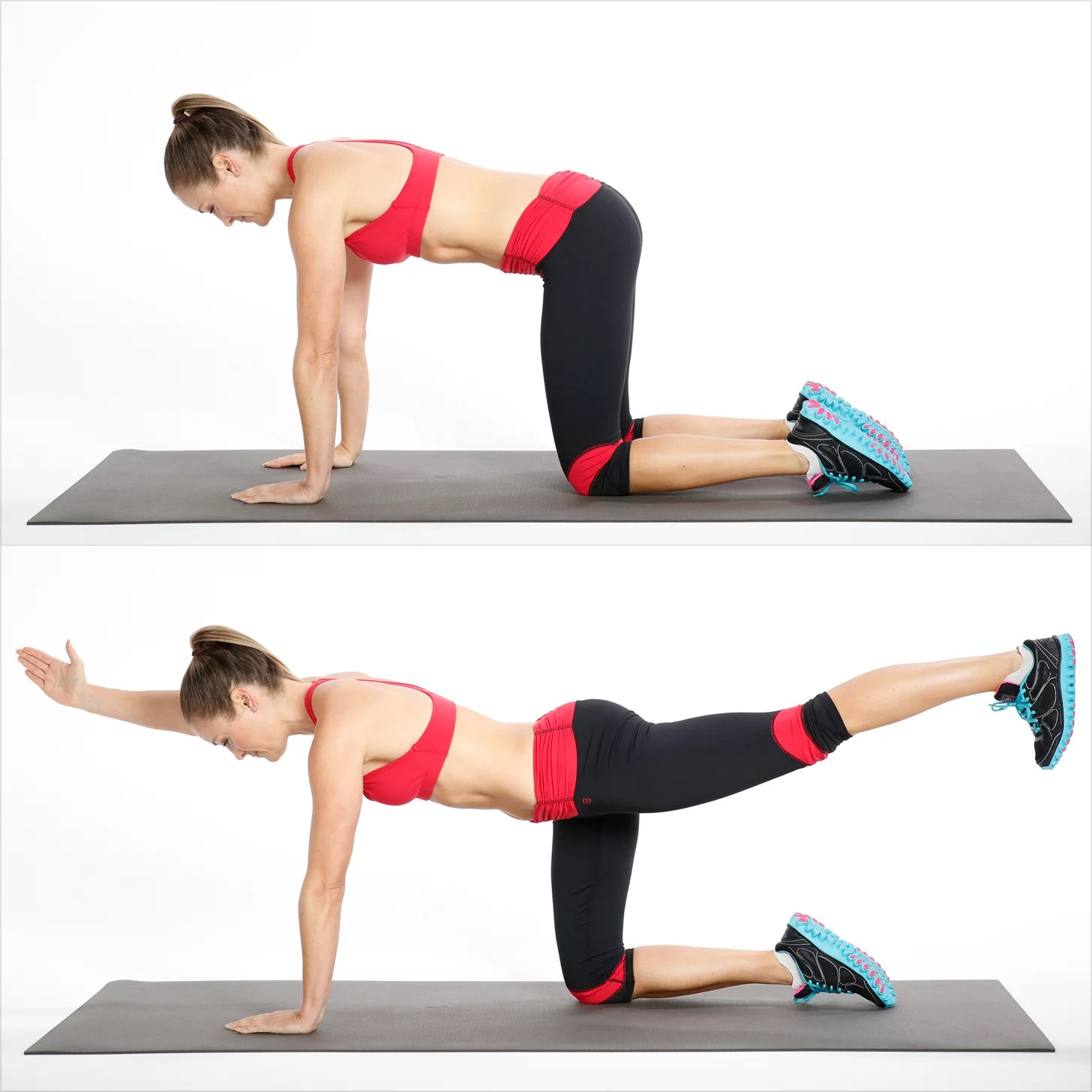 hight resolution of how to do bird dog exercise for your back