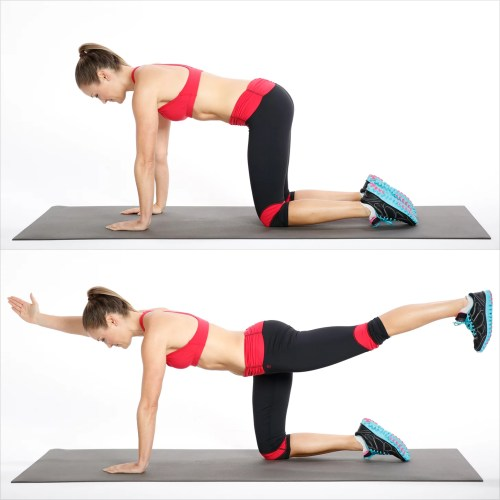 small resolution of how to do bird dog exercise for your back