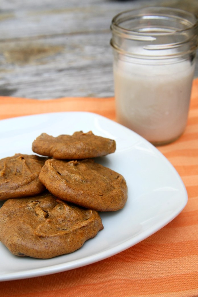 Vegan Gluten-Free Pumpkin Cookies | CelebrityPie Health