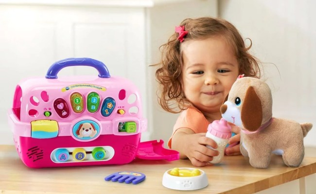 The Best Toys And Gift Ideas For 2 Year Olds In 2019