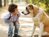 First Pets For Kids Popsugar Moms