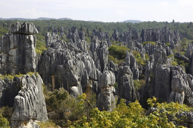 Image result for stone forest