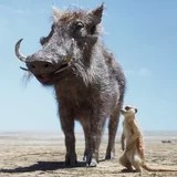 Timon and Pumbaa Save (a Very Fluffy) Young Simba in New Clip From The Lion King