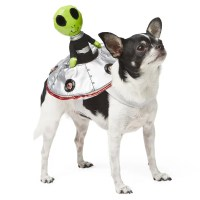 Miley Cyrus's Dogs in Halloween Costumes | POPSUGAR ...
