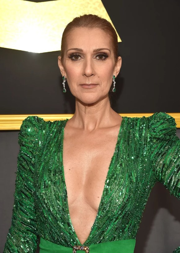 Celine Dion's Zuhair Murad Dress at the 2017 Grammys ...