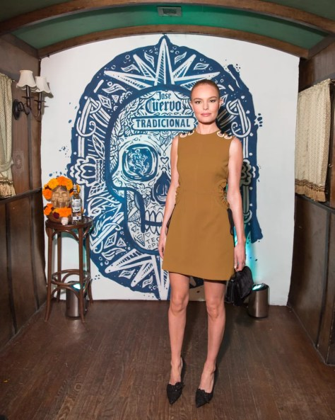 Kate Bosworth Wearing Self-Portrait