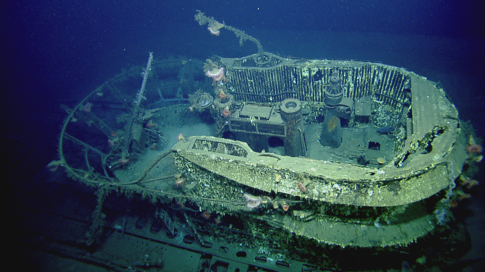 how an expedition to study a sunken nazi u-boat rescued a
