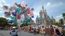 Crazy Knew Walt Disney World