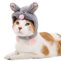 Pick the right Halloween costume for your cat or dog