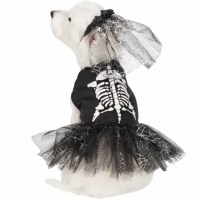 Halloween dog costume ideas: 32 easy, cute costumes for