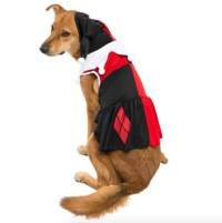 11 adorable matching Halloween costumes for kids and pets